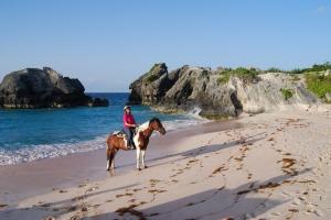 Bermuda Riding 2