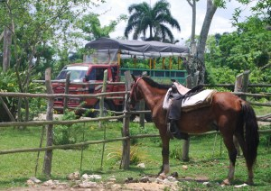4. Two forms of transportation at HorsePlay Punta Cana