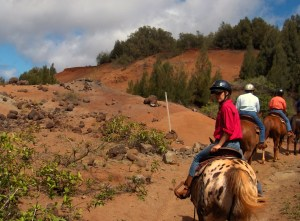 The red soil of Lanai, one of the smallest Hawaiian Islands