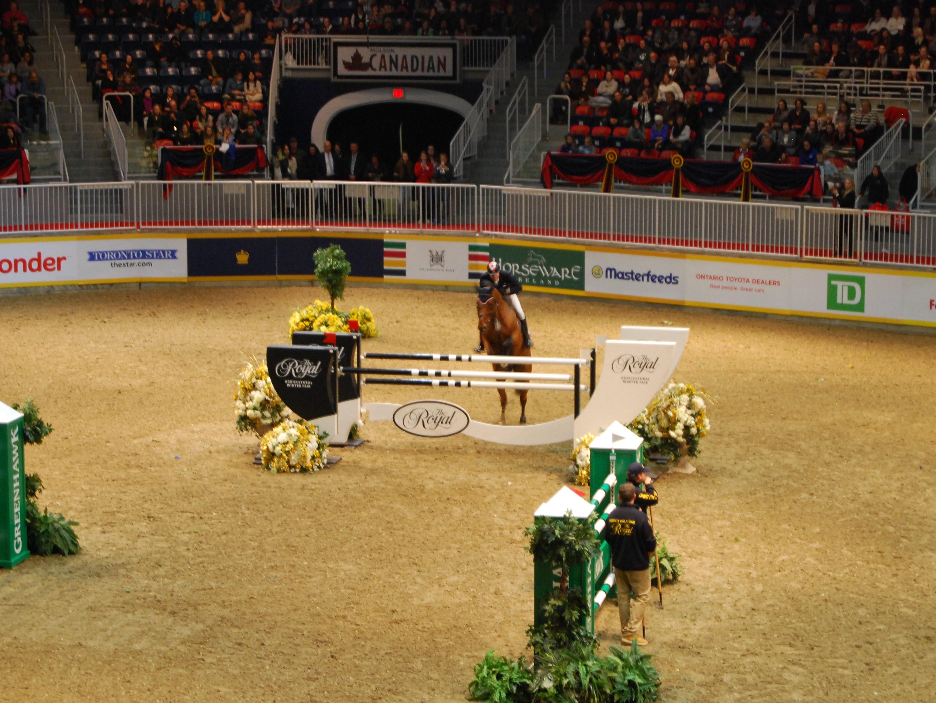 Star Power   Global Travel for Horse Lovers