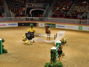 horse, jumping, Ian Millar, Star Power, Royal Winter Fair