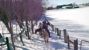 horse trail ride conestogo