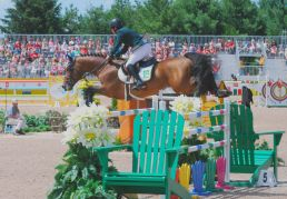 The Muskoka Chair Oxer