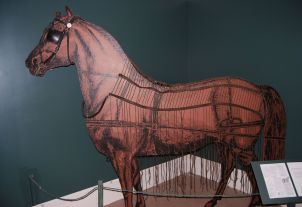 Pioneer Horse Fly Net