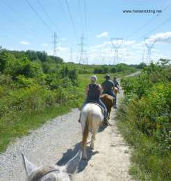 Riding the rural trail along Big Creek Road