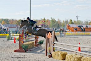 rockton jump 7