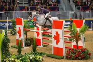 mac cone show jumping horse