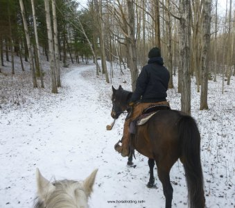 horseback trail riding Caledon, Ontario