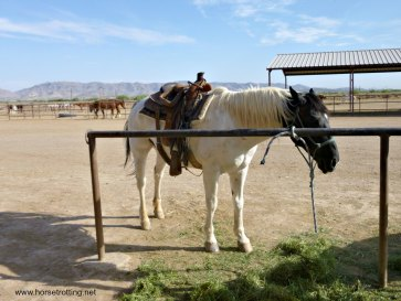 Riding at KOLI Equestrian Center, Arizona