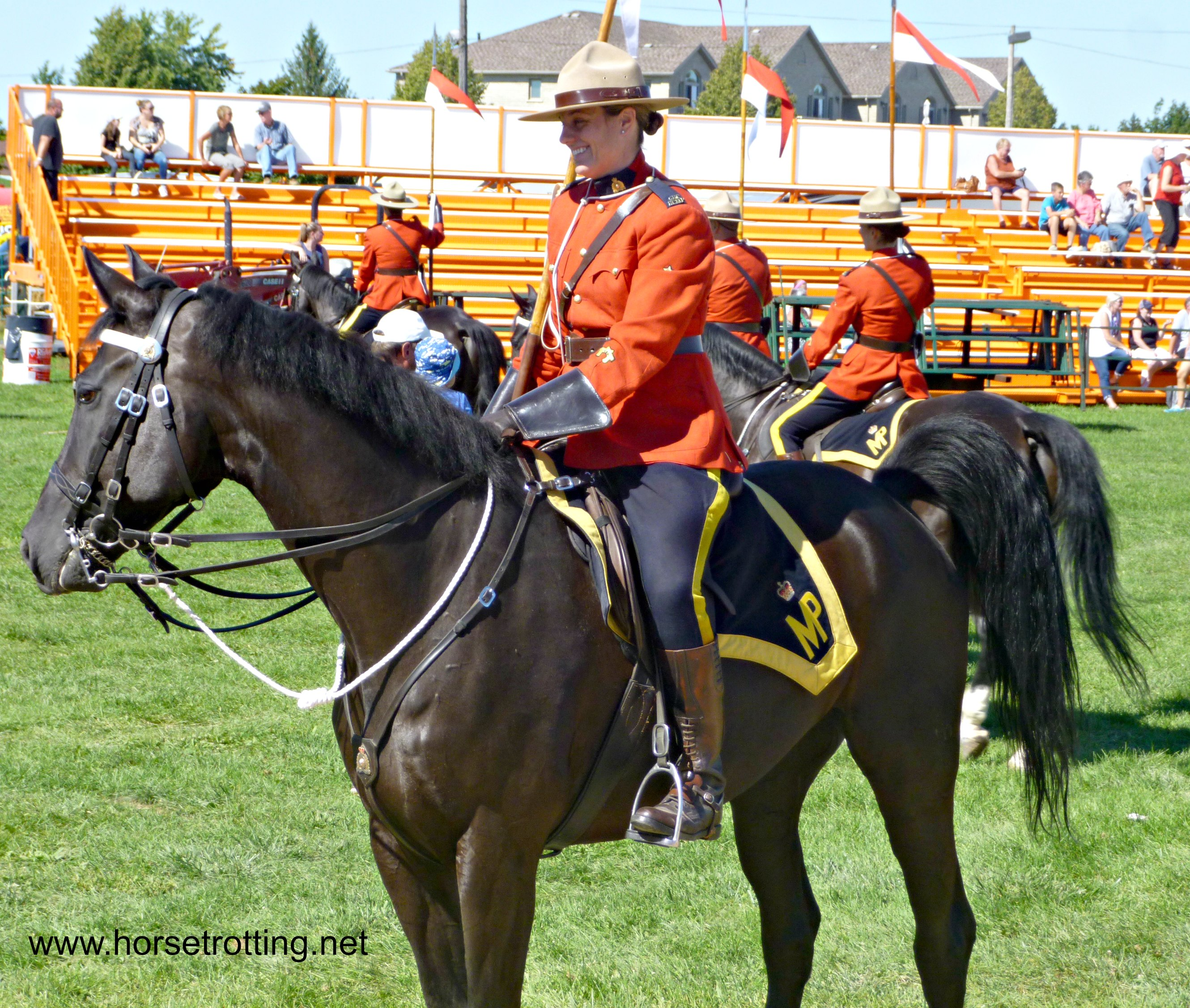 southern ontario fall fairs horses gotta have horses fall