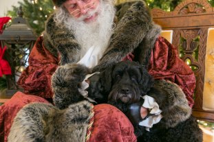 santa-with-victor-horsetrotting-net