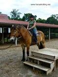 Riding at the Biltmore Estates horsetrotting.net