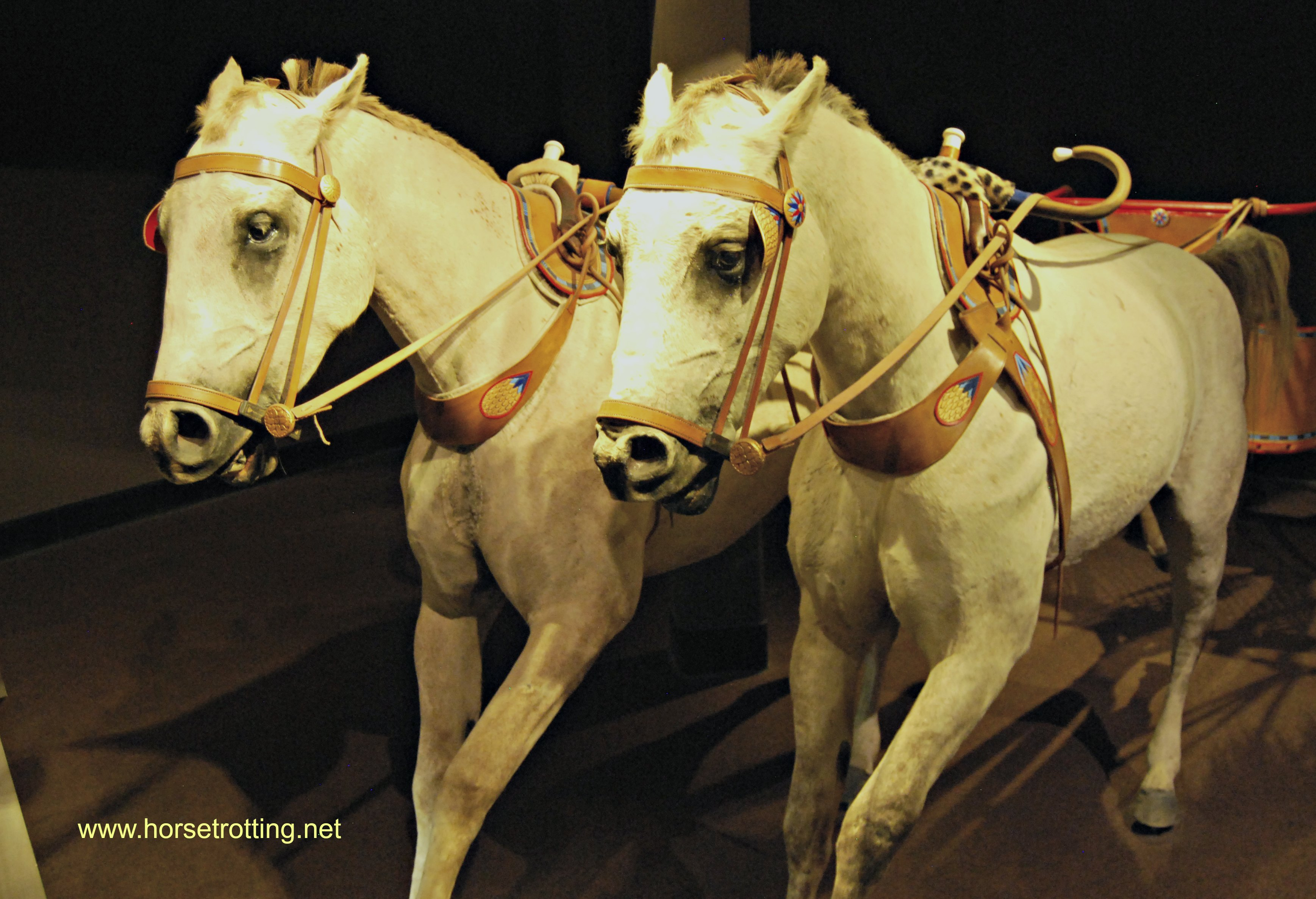 International Horse Museum, Lexington, Kentucky