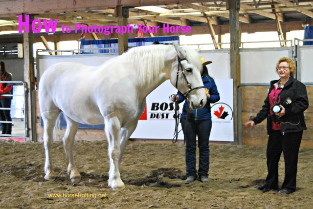 Shawn Hamilton CLIx horse photo clinic at Can Am Expo