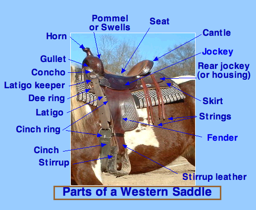 WesternSaddleParts