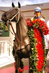 Kentucky Derby Museum Louisville, KY
