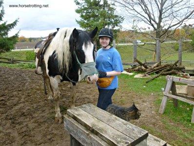 Saddling up at Conestoga River Horse Adventures, Waterloo, Ontario