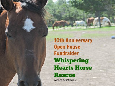Whispering Hearts Horse Rescue