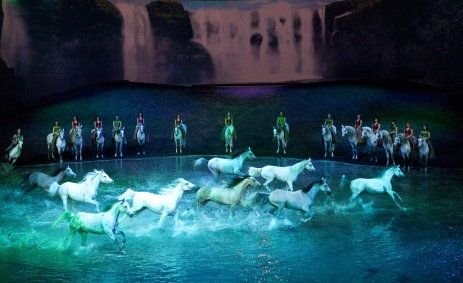 White horse in water during Cavalia Odysseo show