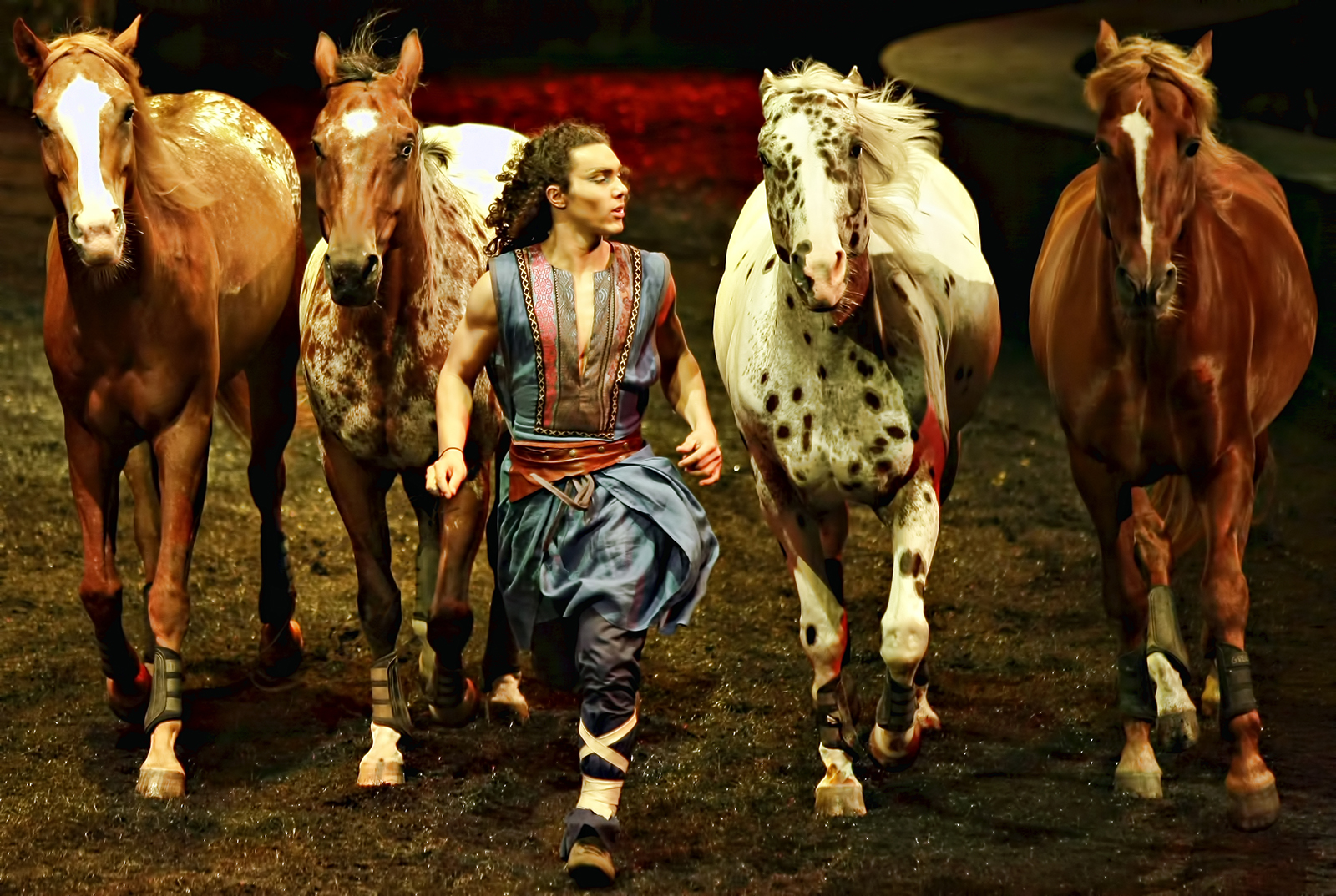 When Cavalia comes to town: Journey with Odysseo Horses. Here's why.