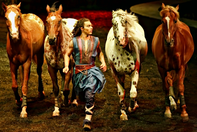 Four horses and trainer during Cavalia Odysseo show