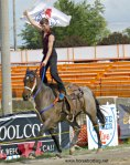 HorsePower Live Binbrook Fair 2016