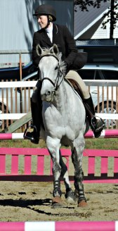 Horse jumping competition at the Norfolk County Fair, Simcoe, Ontario