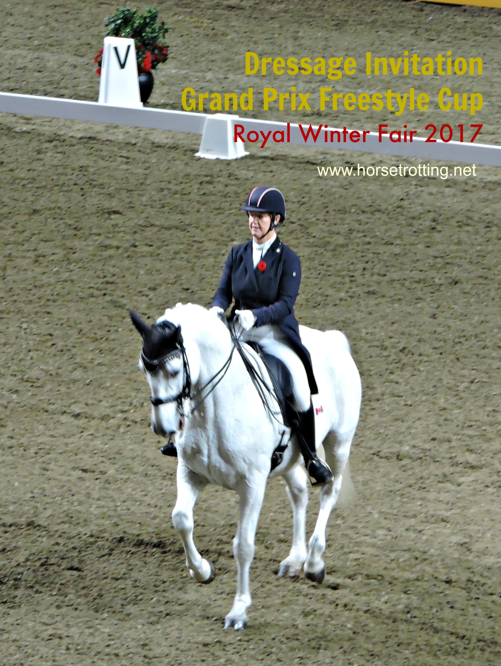 Travel, Toronto (Part III): Dressage at the Royal Winter Fair 2017