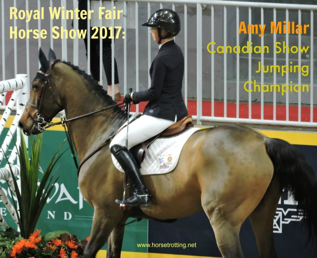 Amy Millar Royal Winter Fair Horse Show 2017