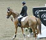 Francois Lamontagne Royal Winter Fair Horse Show 2017