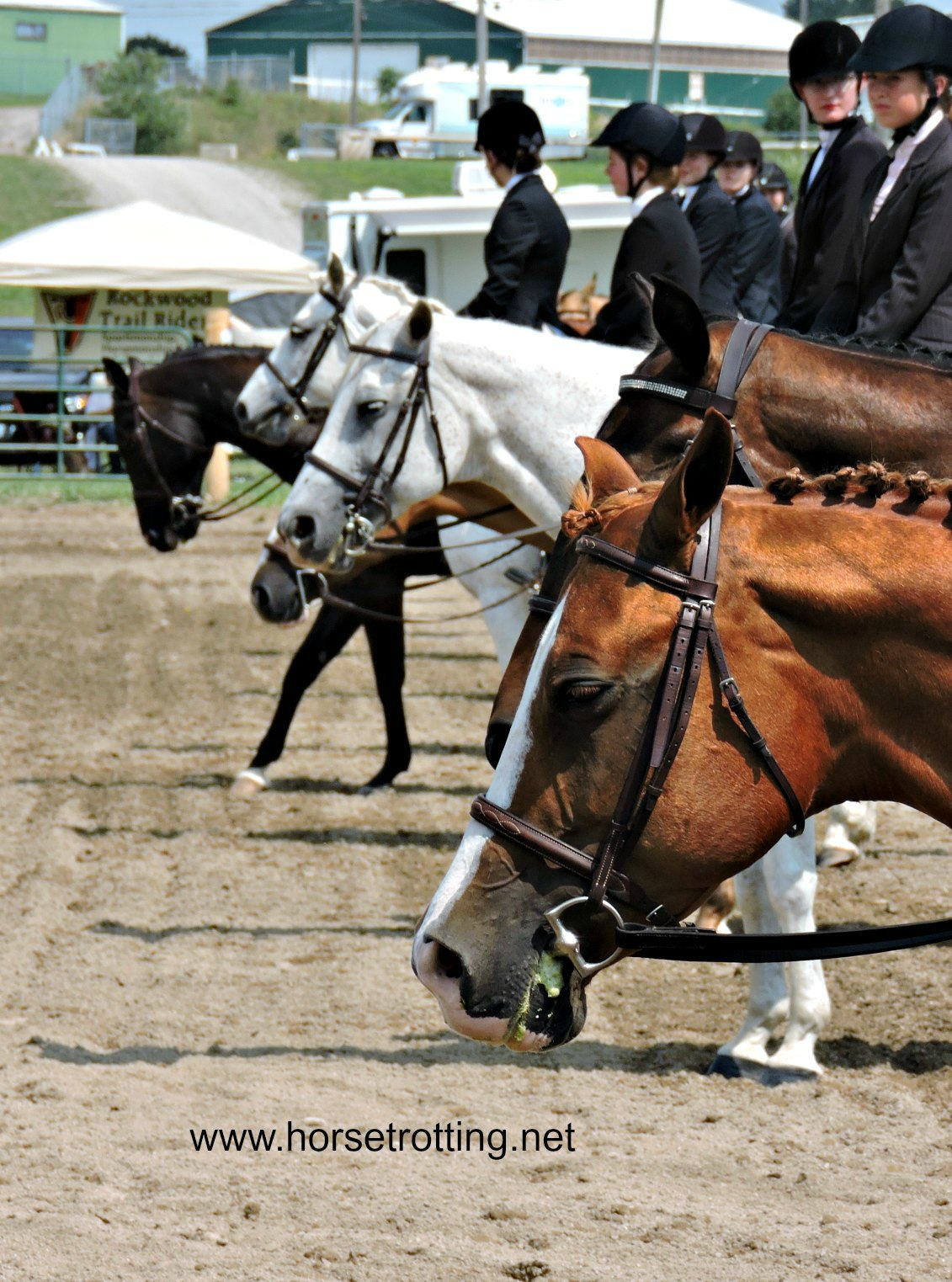 Paris, ON: Ontario Saddle Club Youth Team Tournament