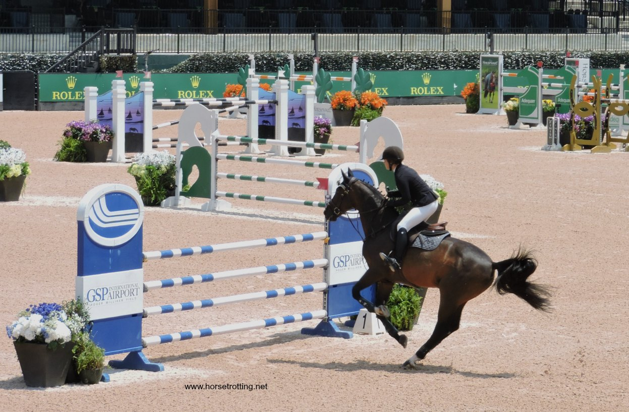 Check out the Tyron Equestrian Center host to FEI 2018 … and many more horse events