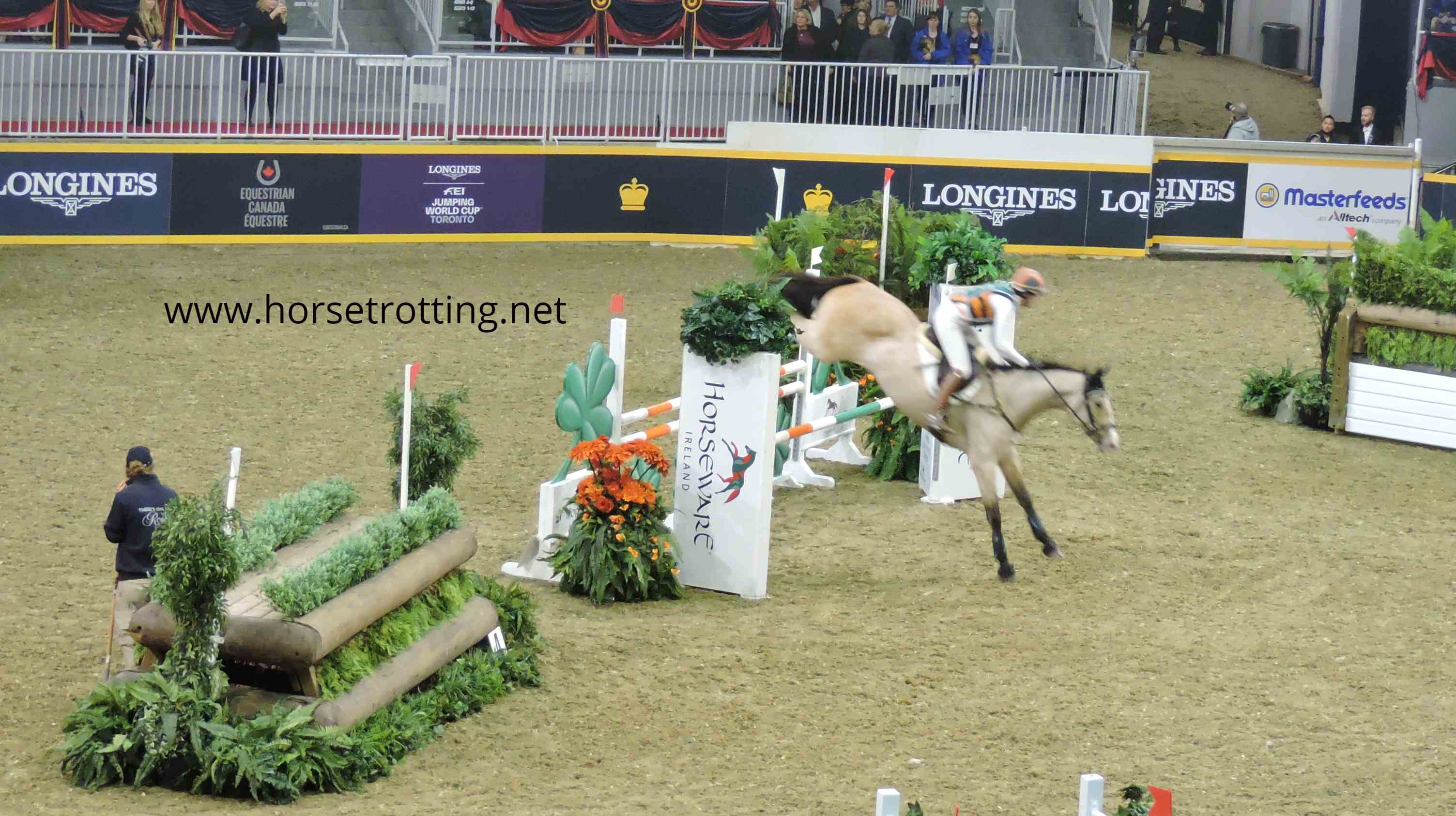 Travel Toronto, ON: The Royal Agricultural Winter Fair Horse Show… Eventing Finals