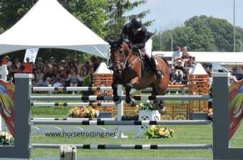 ottawa horse slide 2