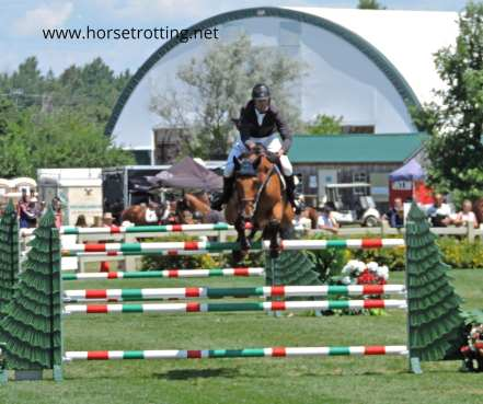 ottawa horseshow