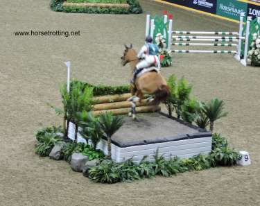 eventing horse show 5