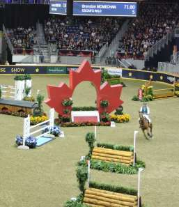 eventing horseshow 3 (1)