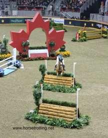 eventing horseshow 3