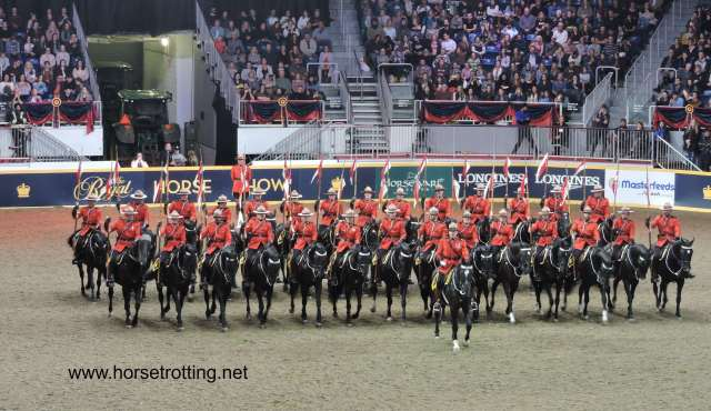royal horse show 7